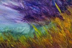 16 purple storm approaching wheat field in the wind.