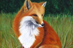 22 acrylic painting of a fox among green grass.