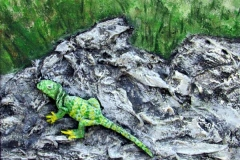 23 green lizard sunning itself on rocks.
