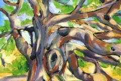 26 oil painting ofancient Angel Oak tree.