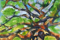 27 oil painting of ancient Angel Oak tree.