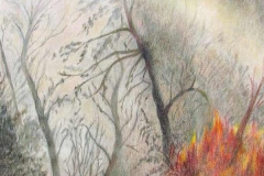 40 colored pencil of a small wildfire among trees.