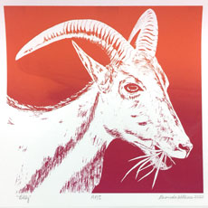 Goat image on April page of 2020 hand-printed Southern Arts Society working animals themed 2020 calendar