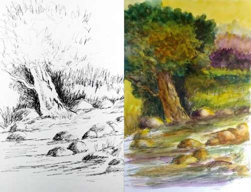 pencil drawing and watercolor wash of tree by artist Ron Shepard for his class.